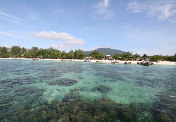 View of coral under the ocean with a beach, trees and mountain in the background, all in the maldives