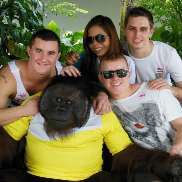 A group of tourists in Thailand's Tiger Temple posing for picture with an orangutan dressed in a t-shirt