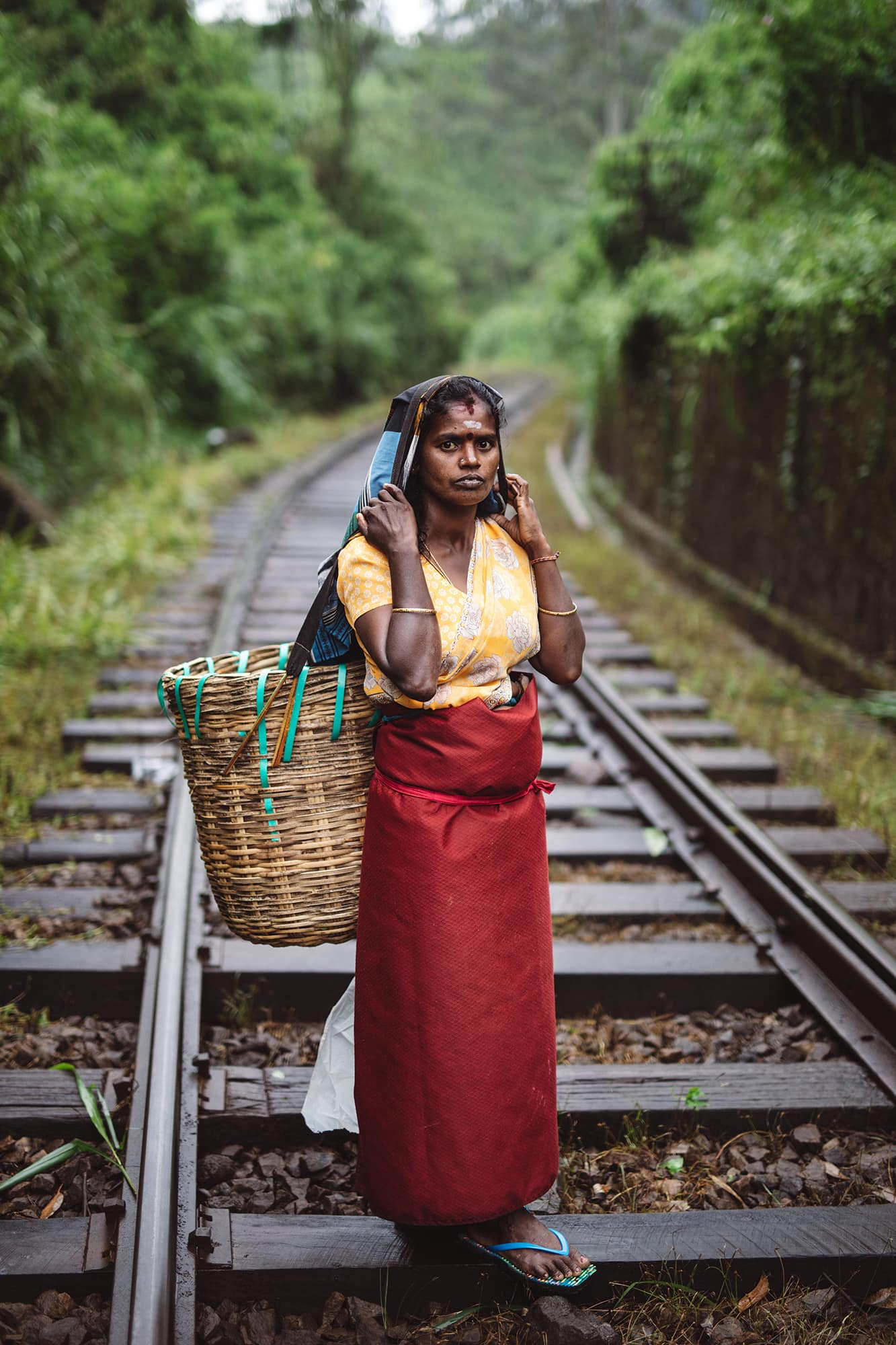 Tea plucker in Sri Lanka train track