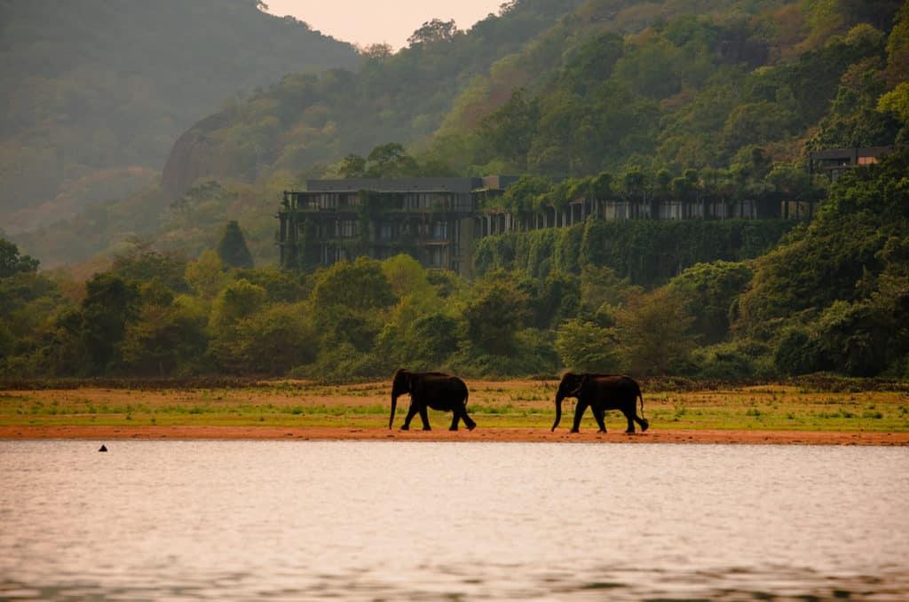 The Kandalama, Dambulla, Sri Lanka