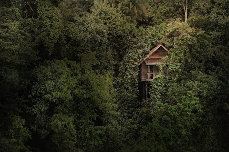 Treehouse looking out onto the ocean from Permai Rainforest Resort