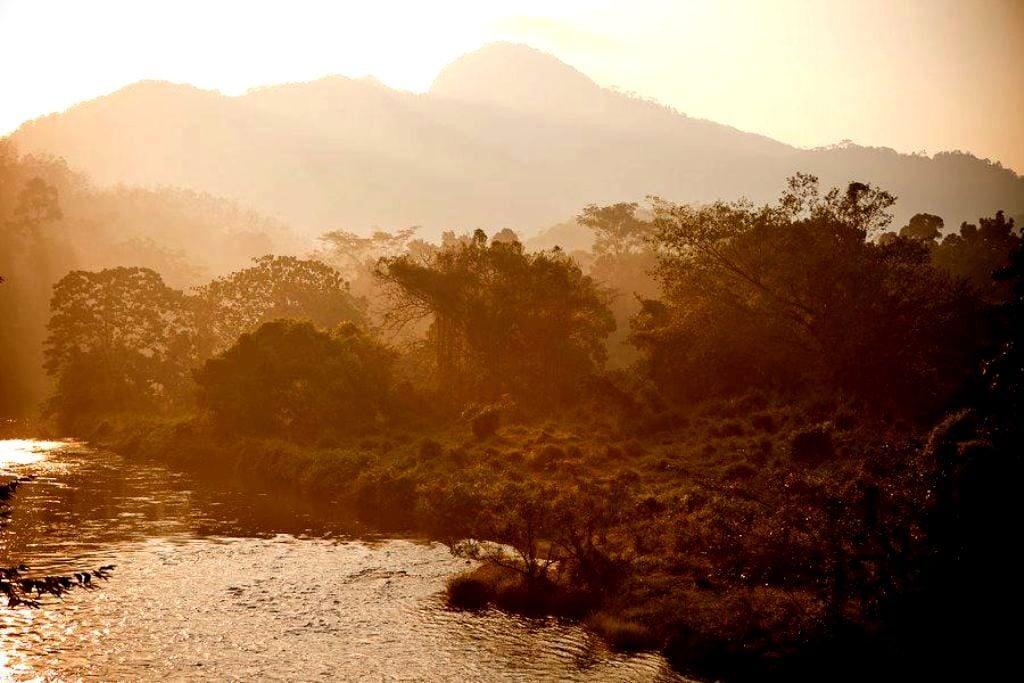 Kithulgala at Dawn