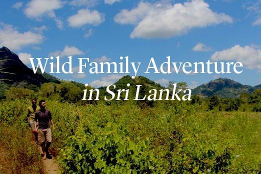 Wild Family Adventure
