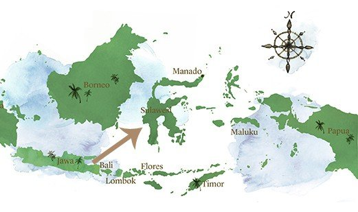 Map of Sulawesi by Experience Travel Group