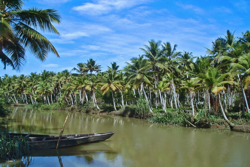 Narrow water ways around Alleppey lined with palm trees with a bright blue sky