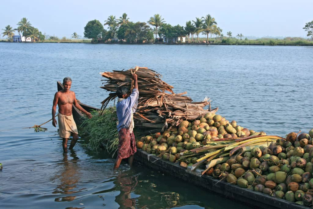 Locals using the backwaters as a transport network for local industries