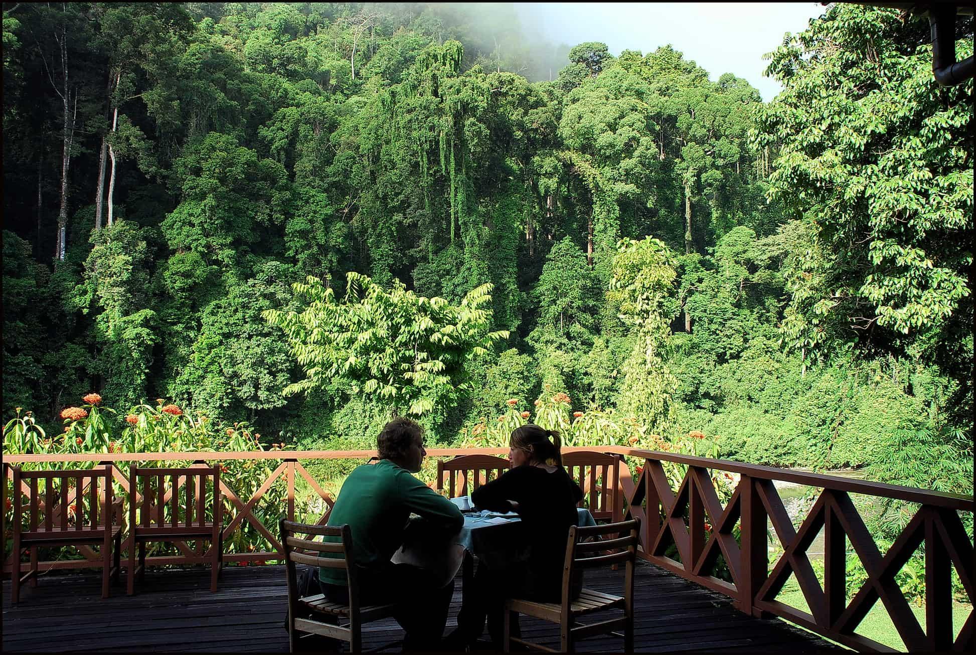 View from terrace in Borneo Rainforest Resort in Danum Valley