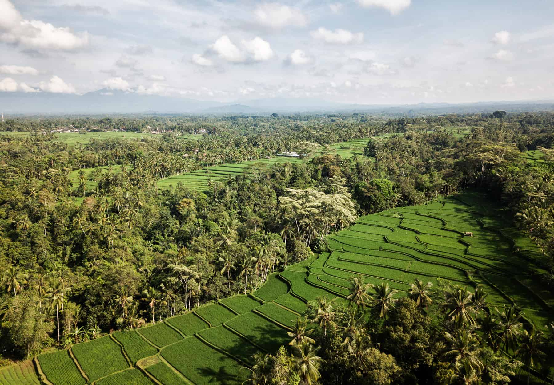 Green travel in Cambodia