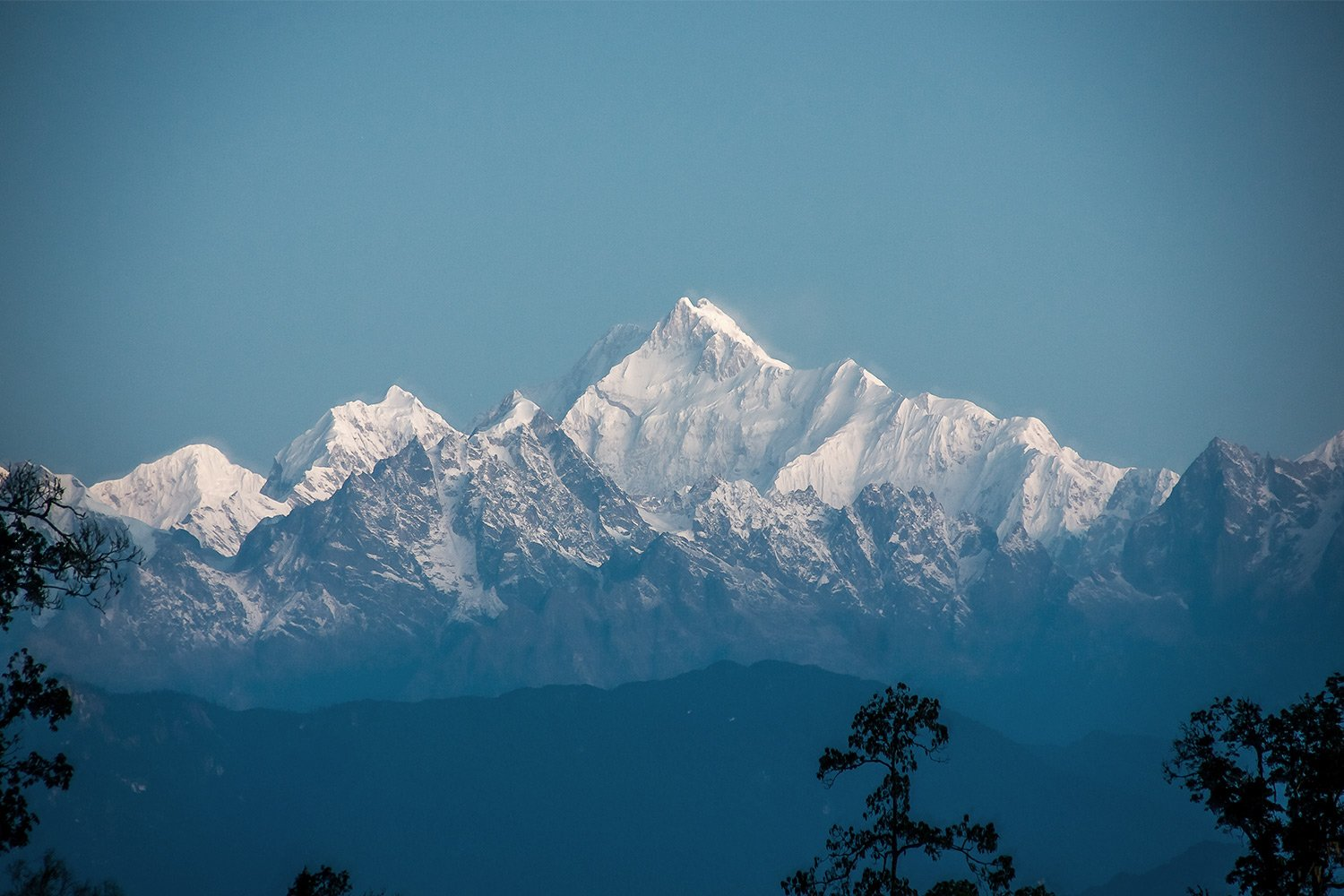 View of the Himalayas in India with trees in the foreground and blue sky in the background