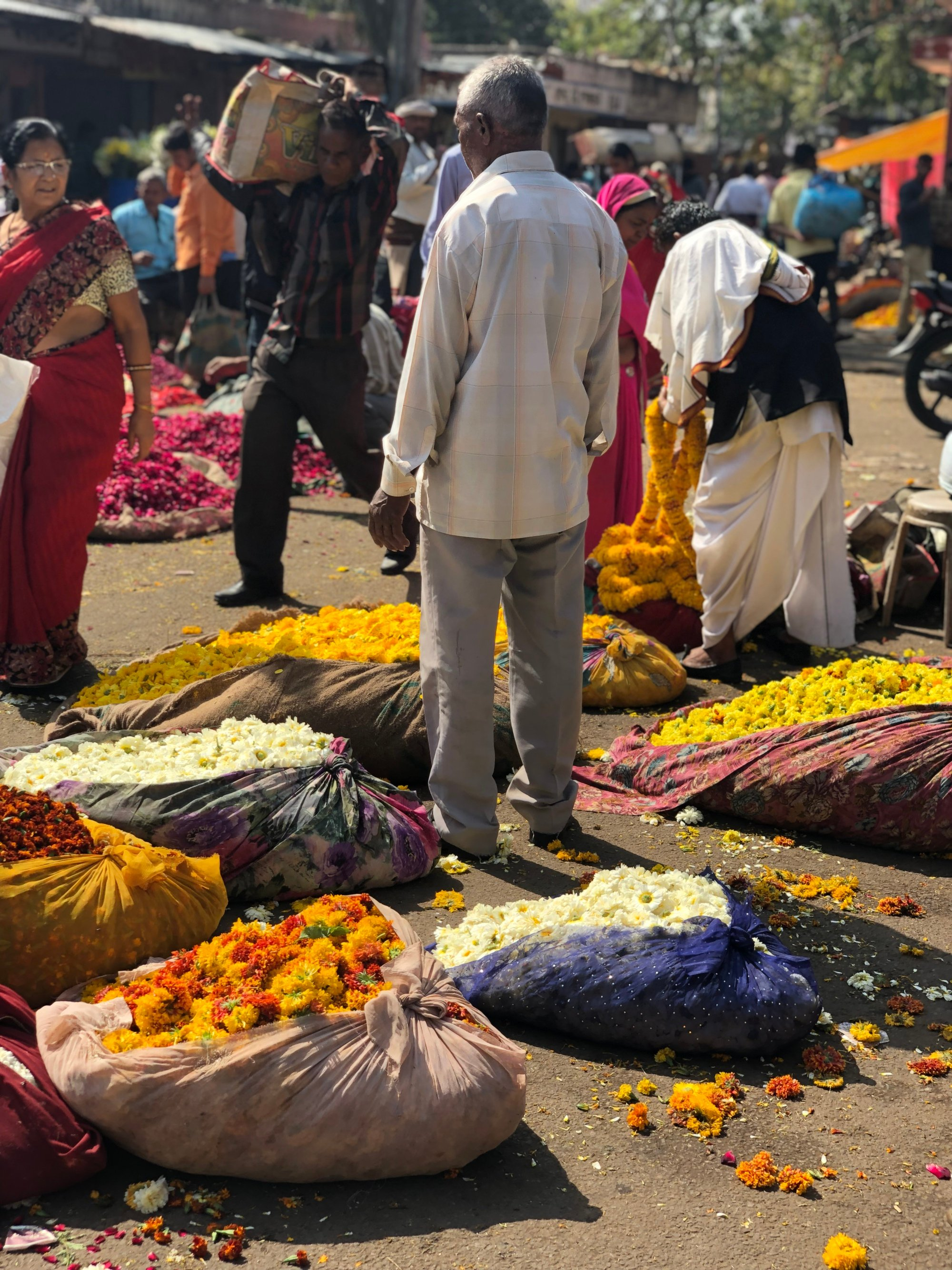 Man in Jaipur flower market with marigolds for Holi Festival