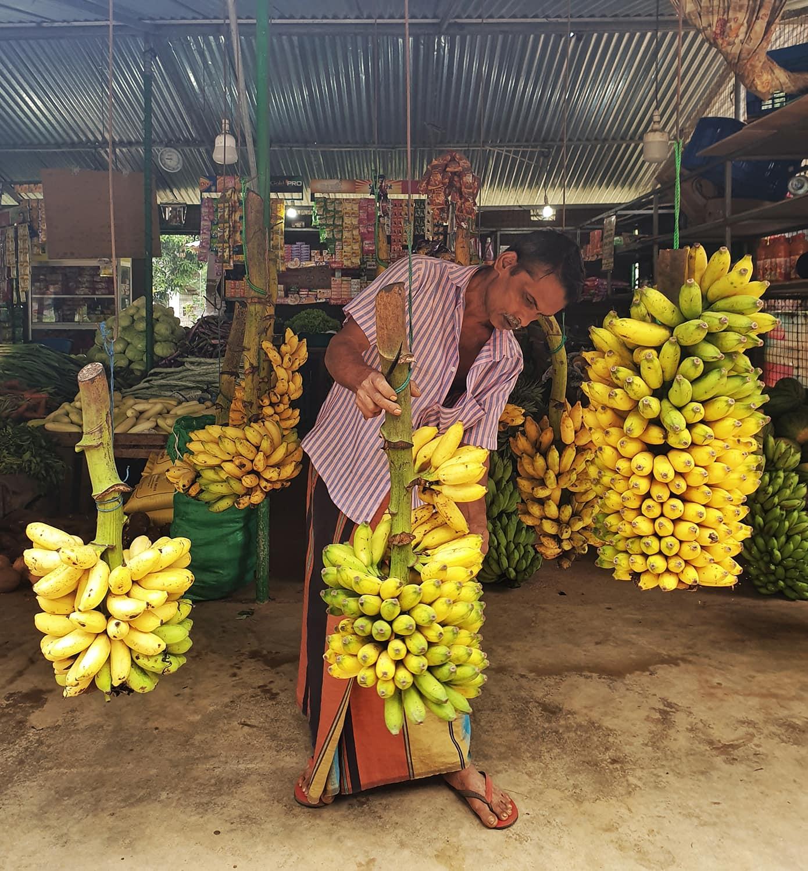 Banana market trader in Sri Lanka