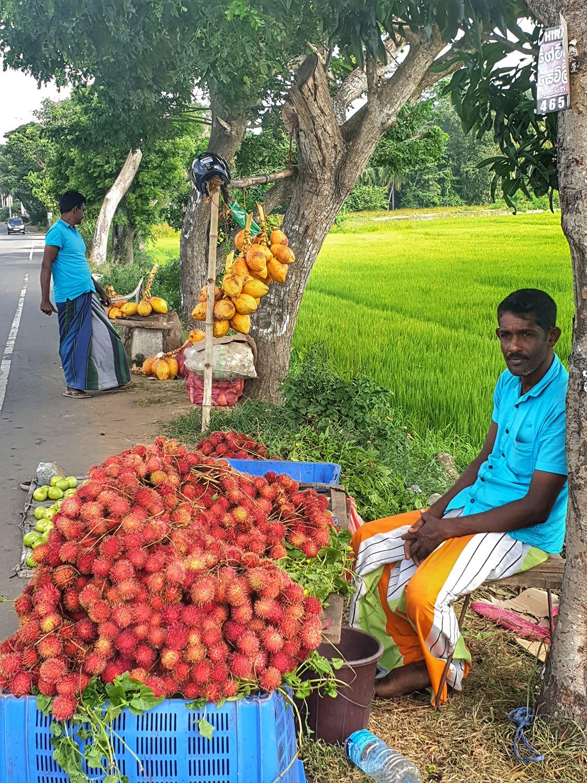 Roadside traders selling Rambutan in Sri Lanka