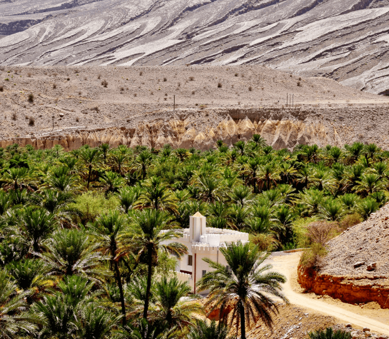 Trees and green landscape in the forefront and rugged desert in the background