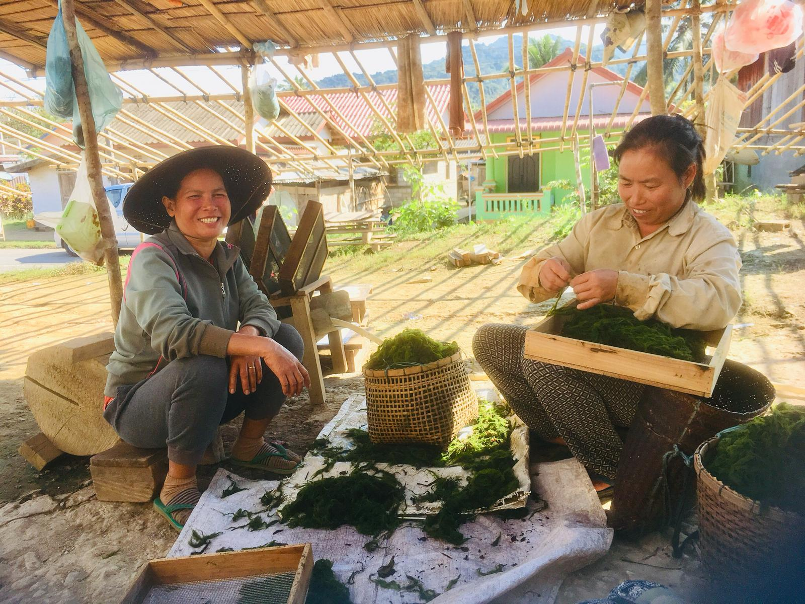Rural life in Indochina, Asia
