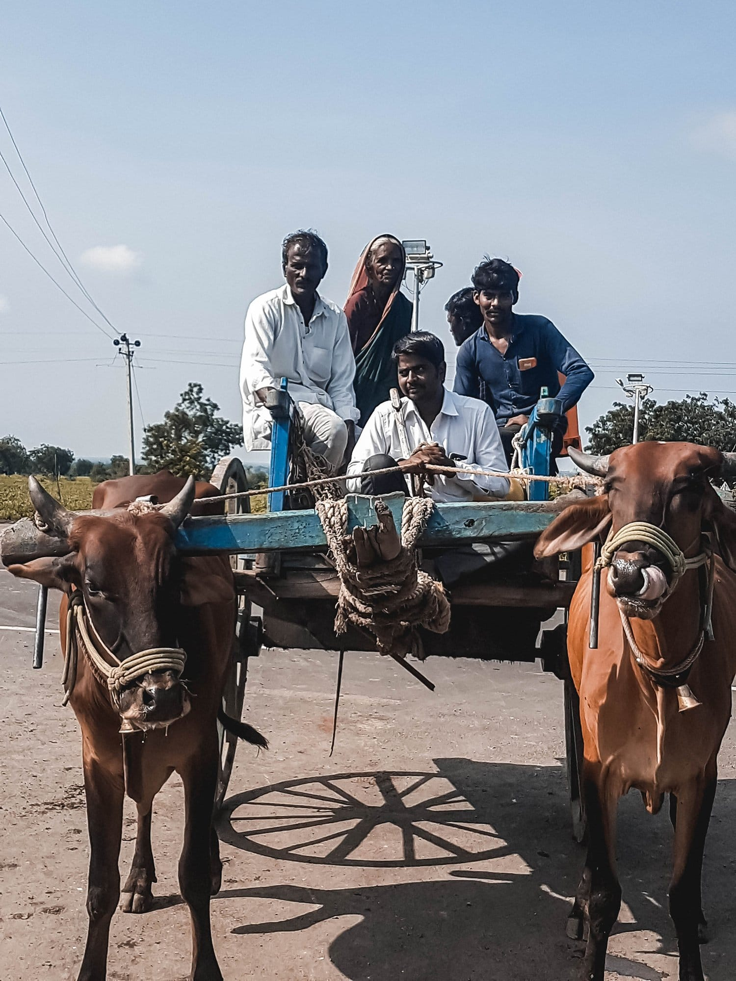Local transportation in the rural Deccan Plateau