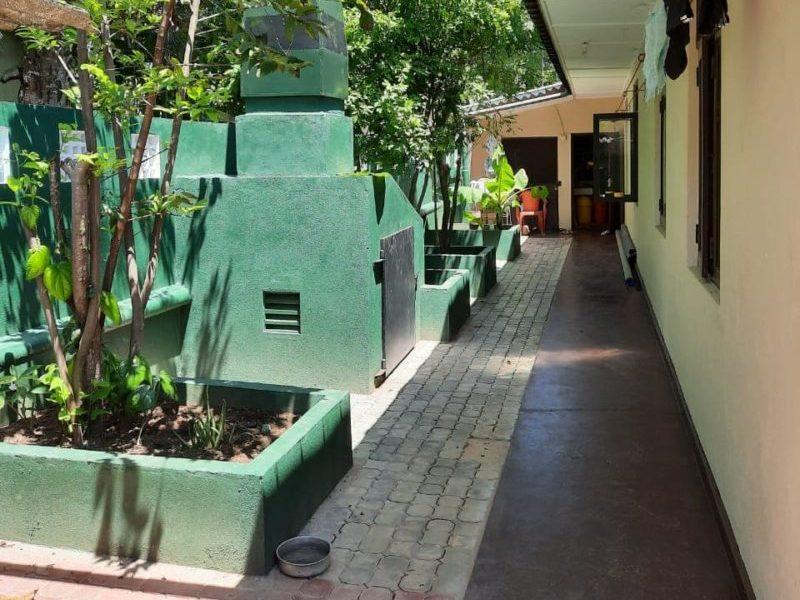 The garden of a chauffeur guide in Sri Lanka
