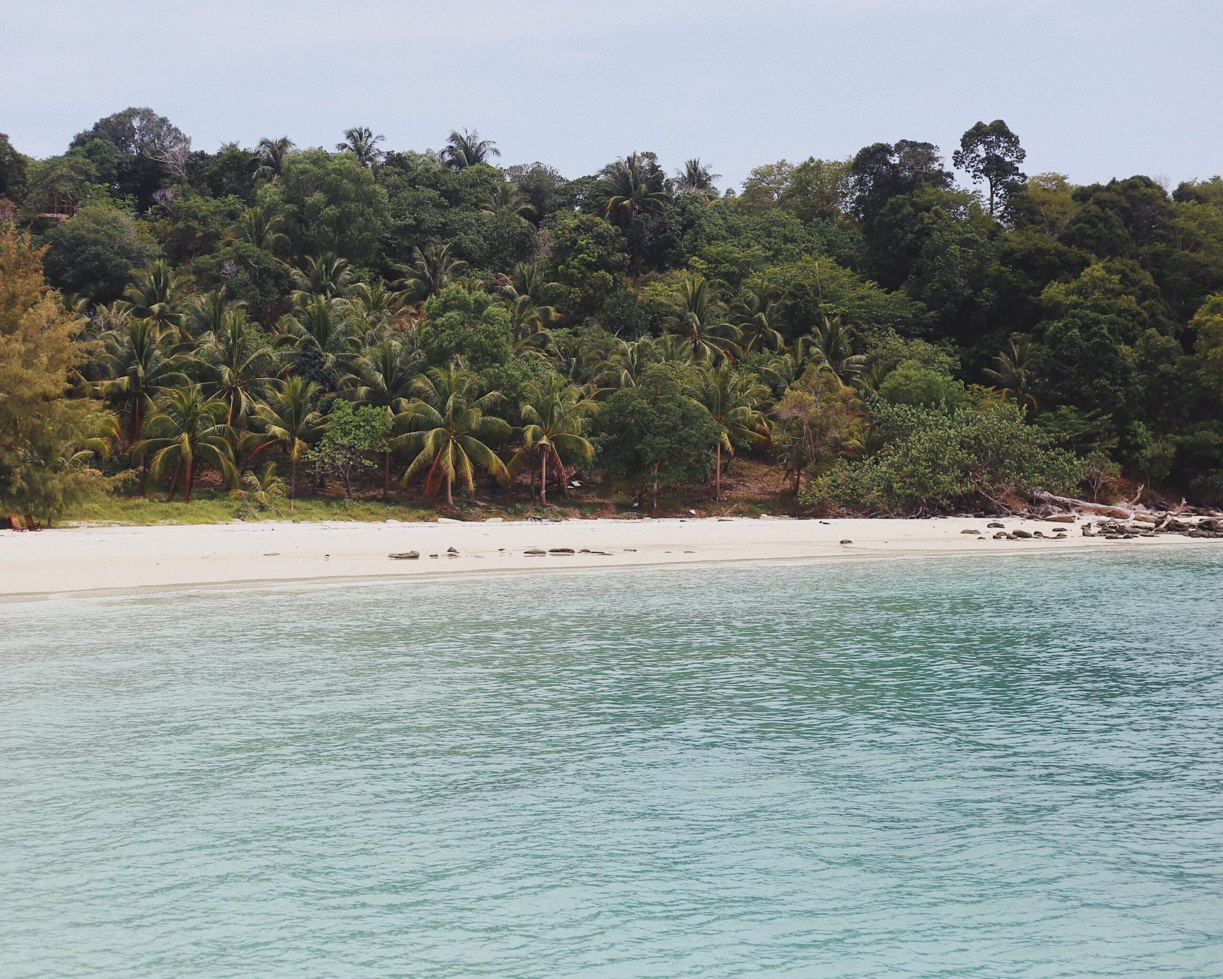 The shores of Koh Rong Island with jungle backdrop