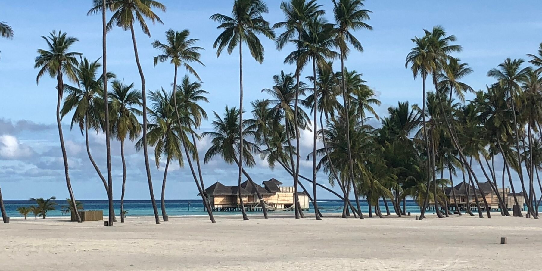 Picture postcard tropical beach at Gili Lankanfushi in the Maldives