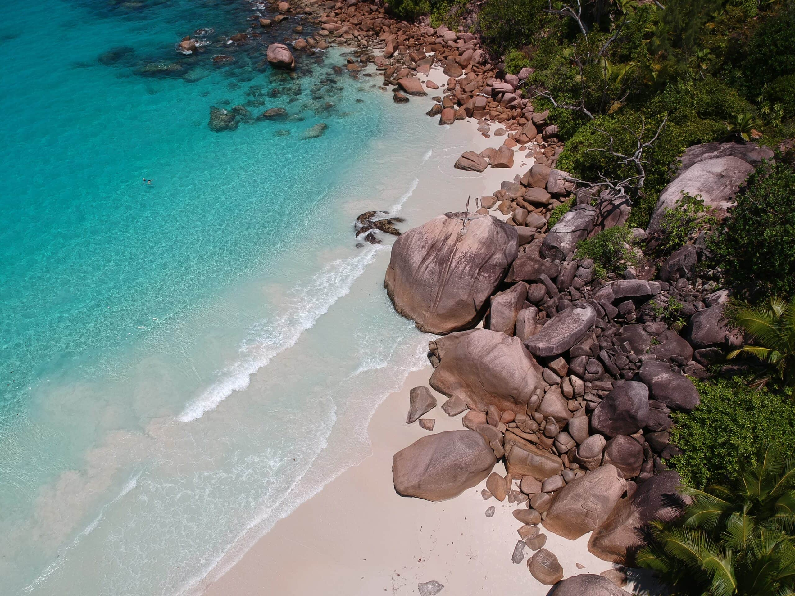 Aerial view of beach in the Seychelles