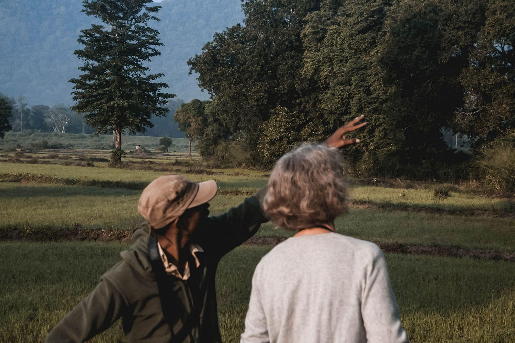 Woman talking to wildlife guide pointing at trees on safari in India
