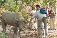 Laos Adventure in Style