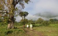 Exploring Sri Lanka (3 Weeks)