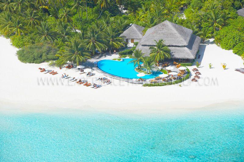 White Flora » Faafu Atoll