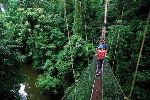 Mulu Skywalk