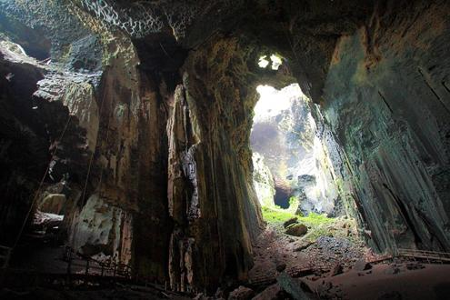 Explore Gomantong Caves