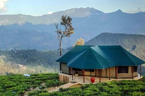 Madulkelle Tea & Eco Lodge