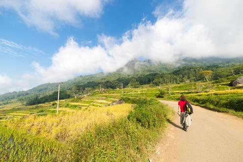 Central Highlands of Sulawesi