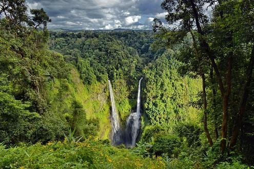Bolaven Plateau by Jeep
