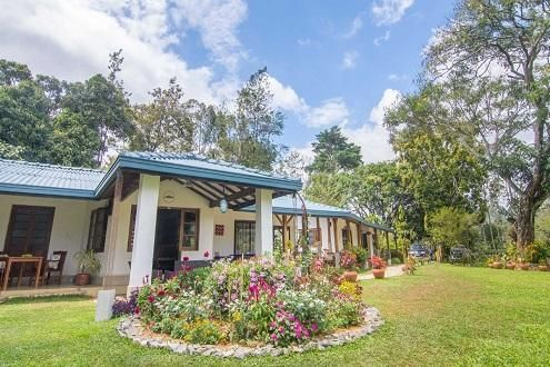 Ceylon Tea Bungalows