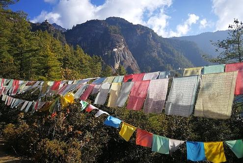Hanging your Prayer Flags
