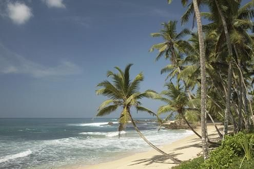 Sri Lanka Explorer Special with East Coast Beach