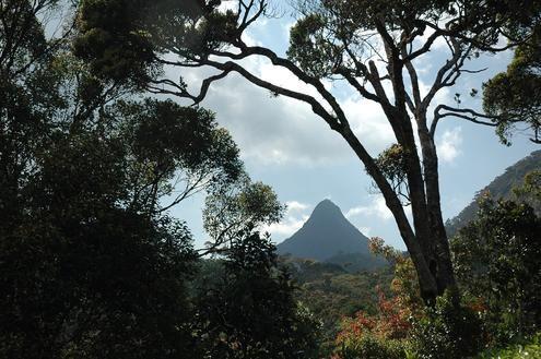 Wild Southern Sri Lanka