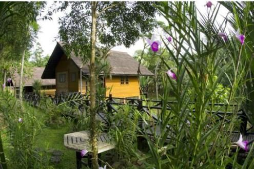 Sepilok Nature Resort, Kabili-Sepilok Forest