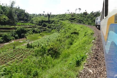 Traverse rural Java by Rail