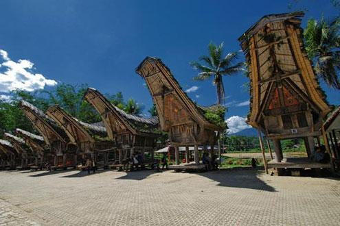 Toraja Village Walk And Funeral Ceremony